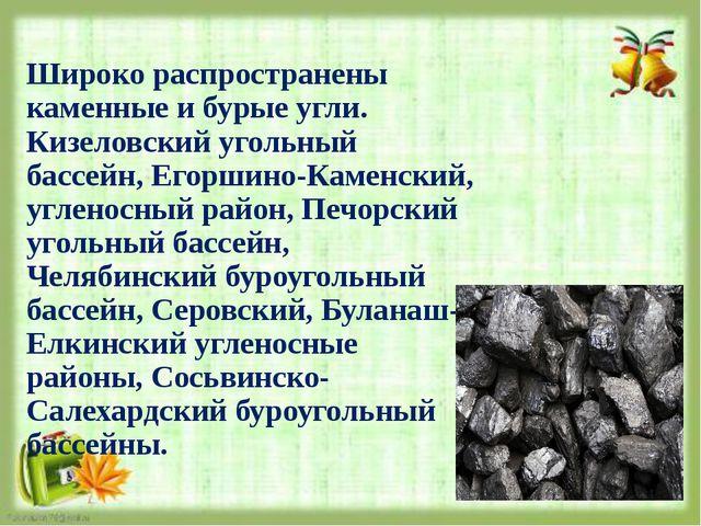 Широко распространены каменные и бурые угли. Кизеловский угольный бассейн, Ег...