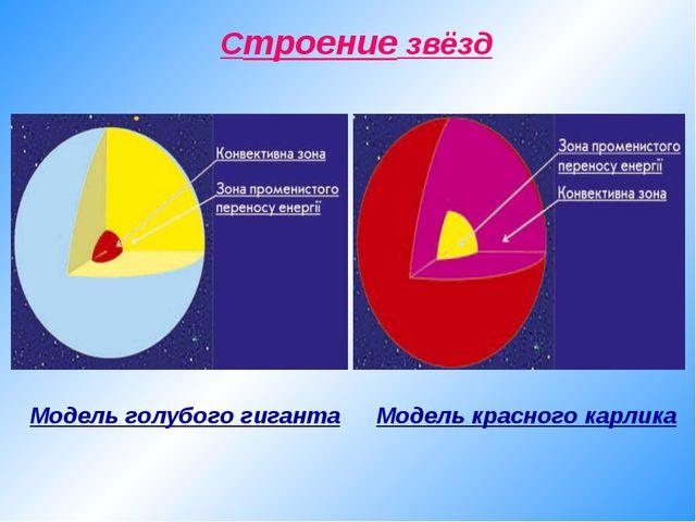 Cтроение звёзд Модель голубого гиганта Модель красного карлика