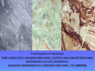 Разновидности мрамора. Ещё существует твердый известняк. Глубоко под землей и