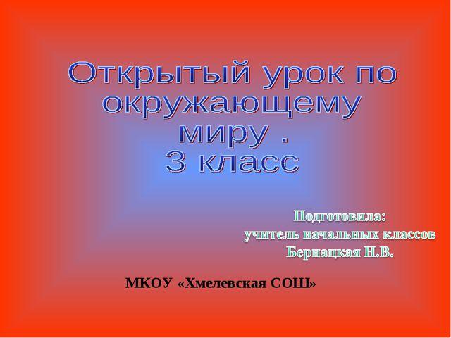 МКОУ «Хмелевская СОШ»