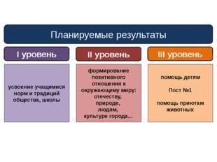 Планируемые результаты I уровень II уровень III уровень усвоение учащимися но