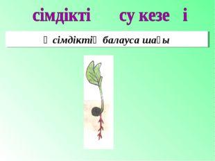 Өсімдіктің балауса шағы