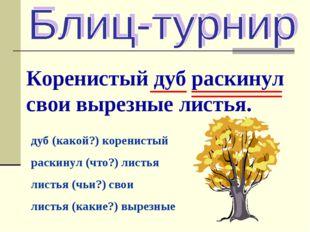 Коренистый дуб раскинул свои вырезные листья. дуб (какой?) коренистый раскину