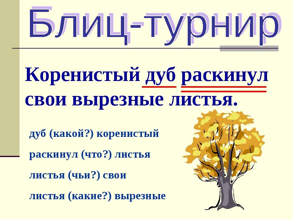 Коренистый дуб раскинул свои вырезные листья. дуб (какой?) коренистый раскину...