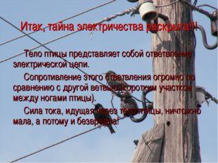 Итак, тайна электричества раскрыта!!! Тело птицы представляет собой ответвлен