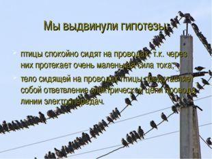 Мы выдвинули гипотезы: птицы спокойно сидят на проводах, т.к. через них проте