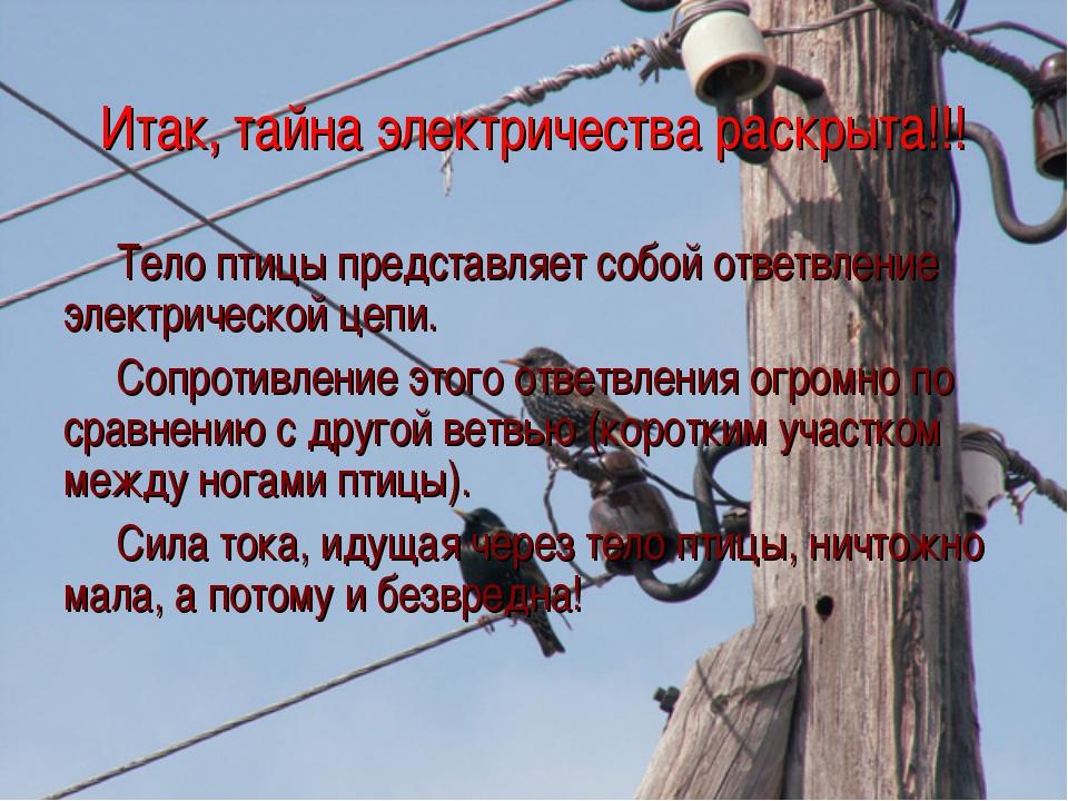 Итак, тайна электричества раскрыта!!! Тело птицы представляет собой ответвлен...