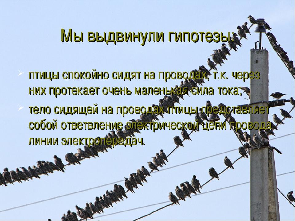 Мы выдвинули гипотезы: птицы спокойно сидят на проводах, т.к. через них проте...