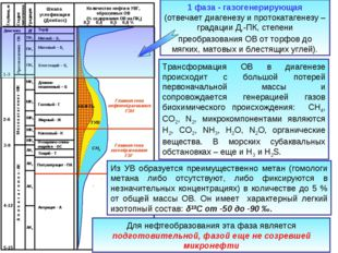 1 фаза - газогенерирующая (отвечает диагенезу и протокатагенезу – градации Дг