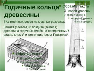 Внешнее строение листа Растение Способ прикрепления листа Число листовых пла