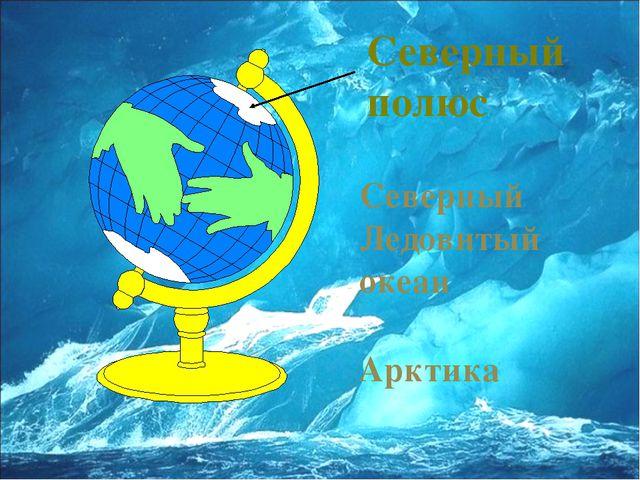 Северный полюс Северный Ледовитый океан Арктика