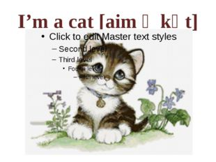 I'm a cat [aim ә kәt]