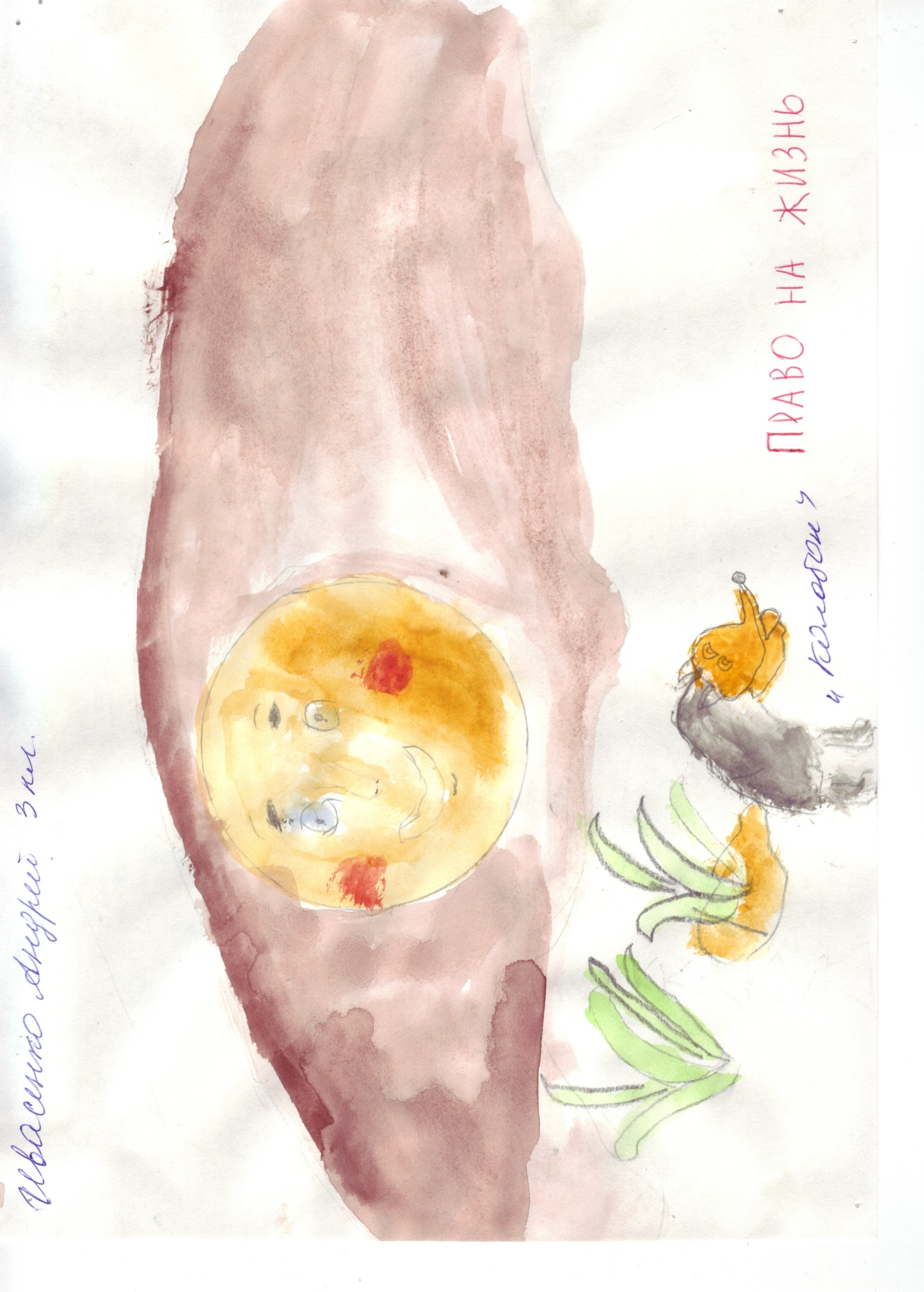 C:\Documents and Settings\maycomp\Мои документы\Мои рисунки\2013-12-06\6.jpg
