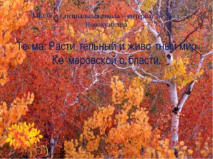 МКОУ « Специальная школа – интернат № 38» г. Новокузнецка Те́ма: Расти́тельны