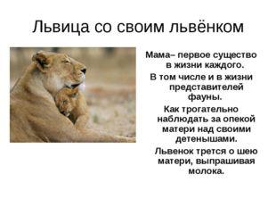Львица со своим львёнком Мама– первое существо в жизни каждого. В том числе и