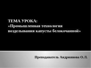 Преподаватель Андриянова О.Л. ТЕМА УРОКА: «Промышленная технология возделыван