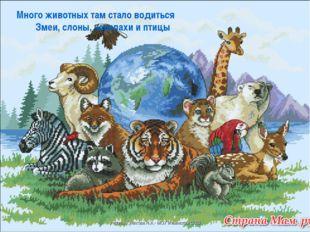 Много животных там стало водиться Змеи, слоны, черепахи и птицы учите
