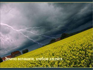Землю вспашите, хлебом засейте учитель Куликова Н.А.- МОУ Ильинская СОШ учите