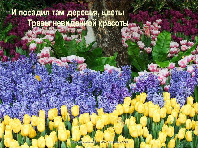 И посадил там деревья, цветы Травы невиданной красоты учитель Куликов...