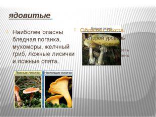 ядовитые Наиболее опасны бледная поганка, мухоморы, желчный гриб, ложные лис