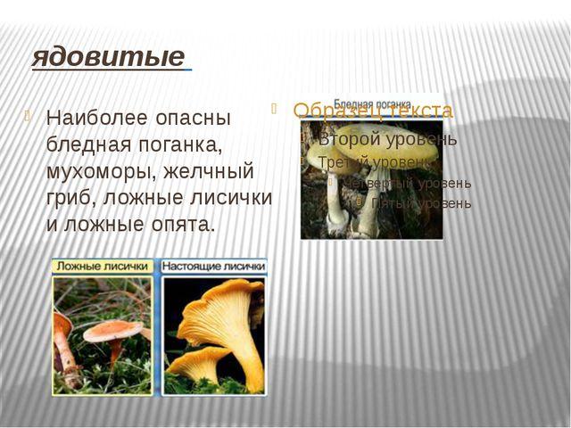 ядовитые Наиболее опасны бледная поганка, мухоморы, желчный гриб, ложные лис...