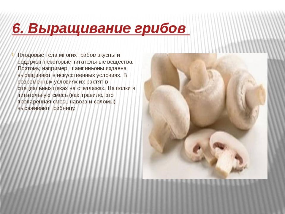 6. Выращивание грибов Плодовые тела многих грибов вкусны и содержат некоторые...