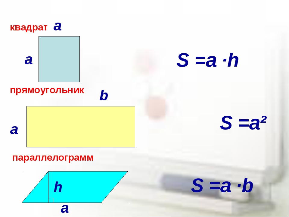 а а квадрат прямоугольник параллелограмм а а b h S =a ∙h S =a² S =a ∙b