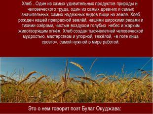 Хлеб…Один из самых удивительных продуктов природы и человеческого труда, оди