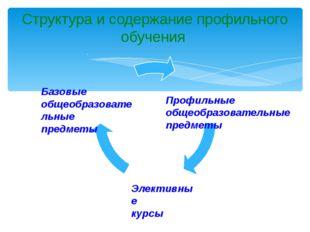 Структура и содержание профильного обучения Базовые общеобразовательные предм