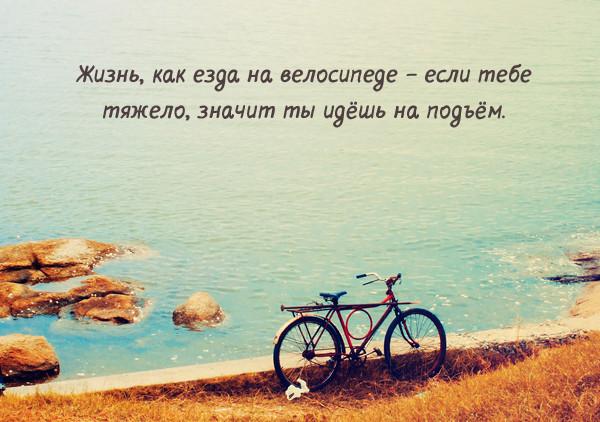 Лучшие цитаты на тему жизни