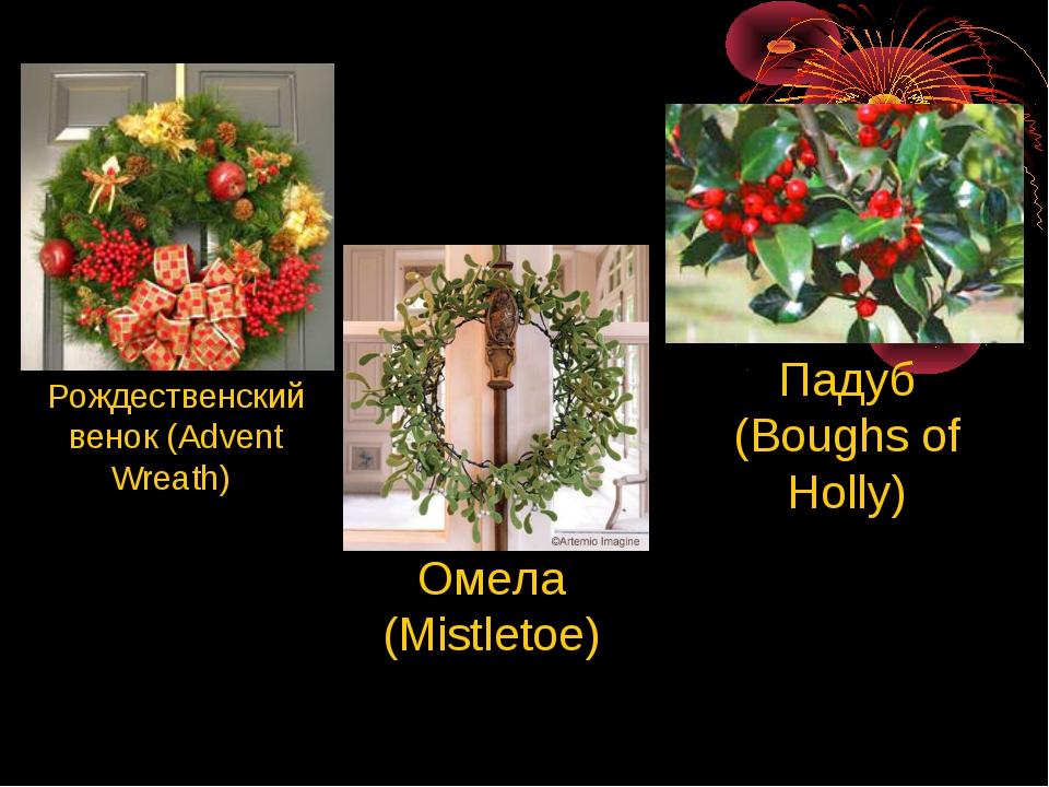 Рождественский венок (Advent Wreath) Омела (Mistletoe) Падуб (Boughs of Holly)