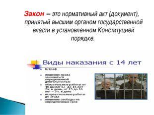 Закон – это нормативный акт (документ), принятый высшим органом государственн