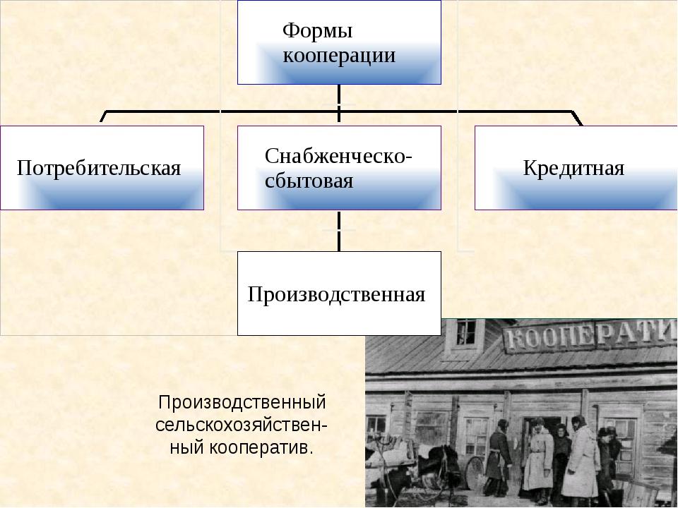 План: Производственный сельскохозяйствен-ный кооператив.