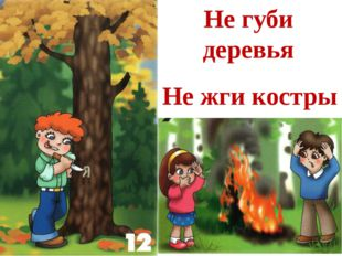 Не губи деревья Не жги костры