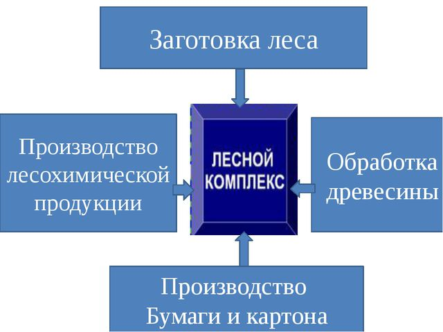 Заготовка леса Производство Бумаги и картона Обработка древесины Производство...