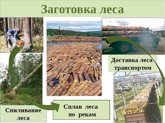 Заготовка леса Сплав леса по рекам Спиливание леса Доставка леса транспортом