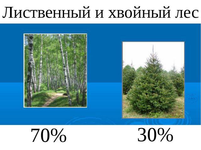 70% 30% Лиственный и хвойный лес