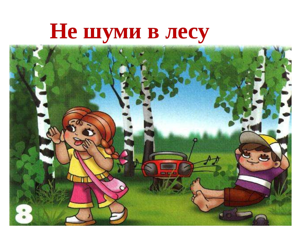 Не шуми в лесу