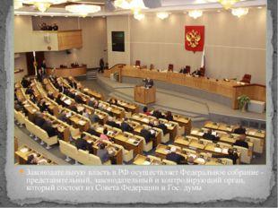 Законодательную власть в РФ осуществляет Федеральное собрание - представитель