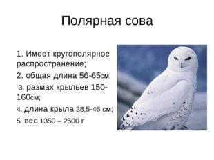 Полярная сова 1. Имеет кругополярное распространение; 2. общая длина 56-65см;