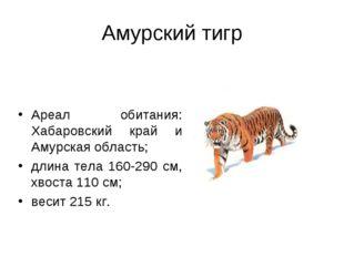 Амурский тигр Ареал обитания: Хабаровский край и Амурская область; длина тела