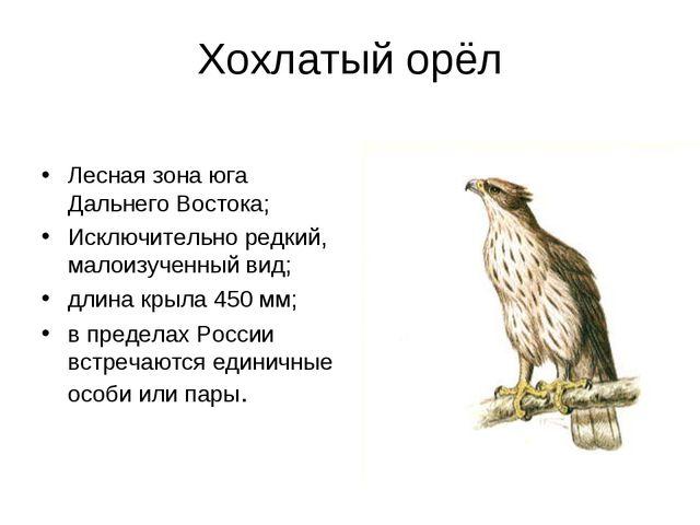 Хохлатый орёл Лесная зона юга Дальнего Востока; Исключительно редкий, малоизу...