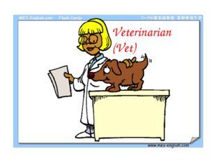 Veterinarian (Vet)