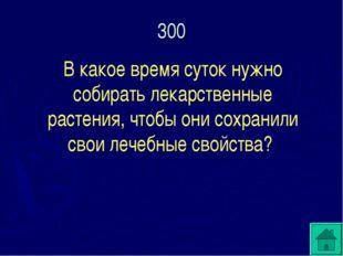 300 В какое время суток нужно собирать лекарственные растения, чтобы они сохр