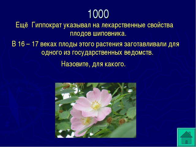 Ещё Гиппократ указывал на лекарственные свойства плодов шиповника. В 16 – 17...