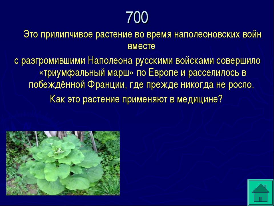 Это прилипчивое растение во время наполеоновских войн вместе с разгромившими...