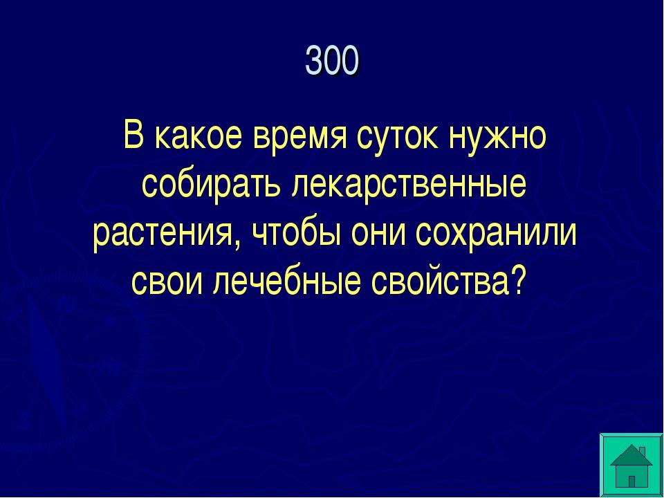 300 В какое время суток нужно собирать лекарственные растения, чтобы они сохр...