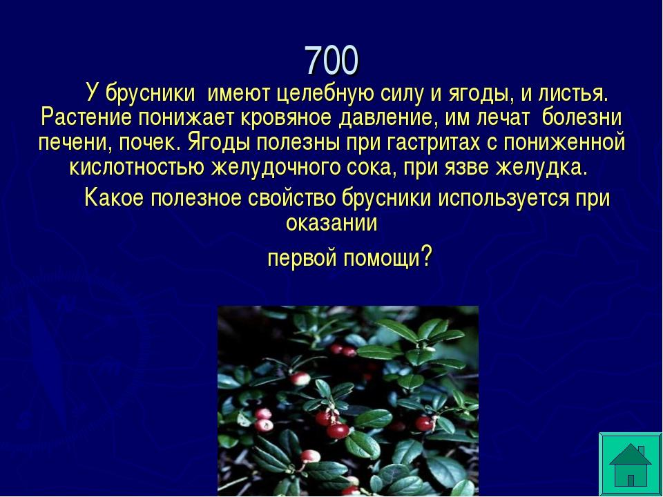 У брусники имеют целебную силу и ягоды, и листья. Растение понижает кровяное...