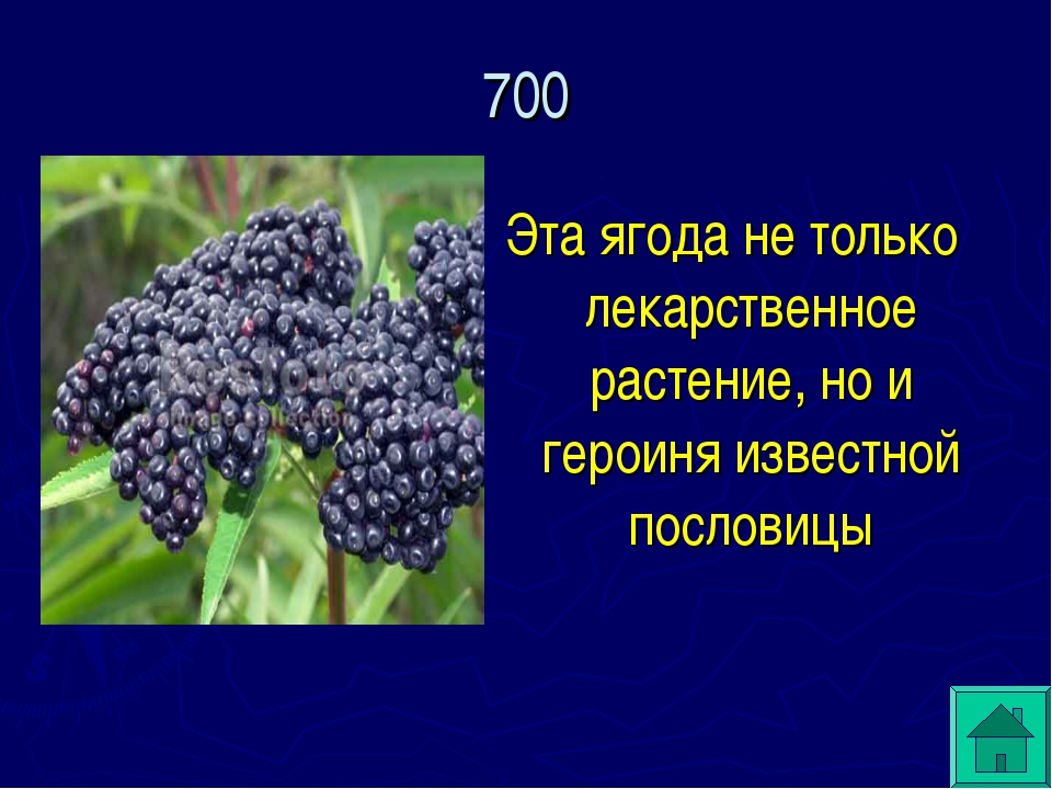 Эта ягода не только лекарственное растение, но и героиня известной пословицы...
