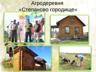 Агродеревня «Степаново городище»